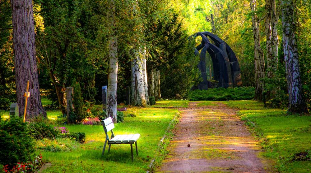 Meditasyon Molası  25 Haziran